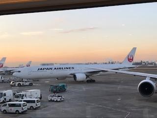 20190203-8飛行機